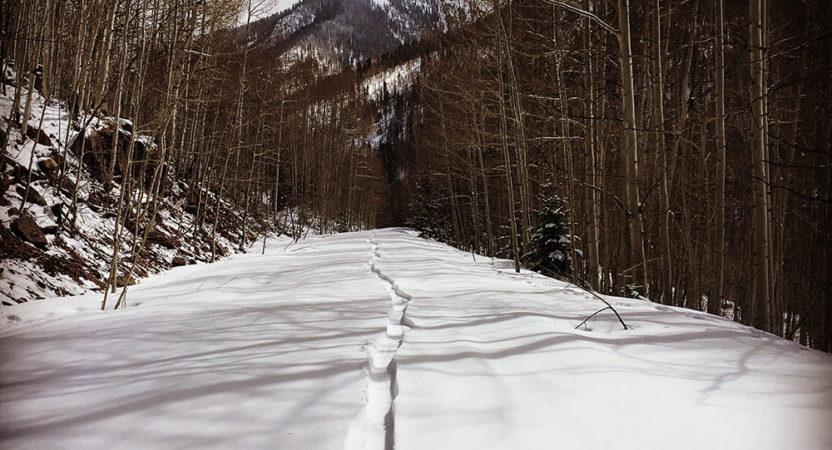 Winter Trails Input Needed