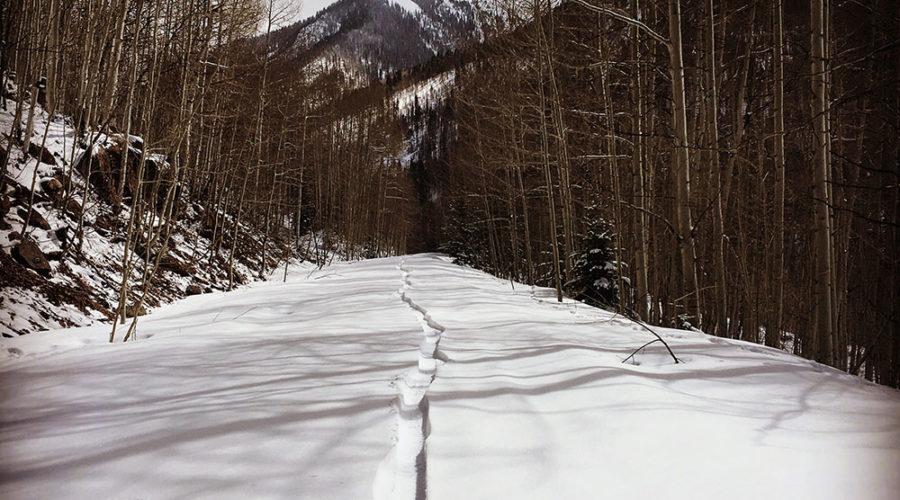 Fat Biking on fresh snow fallen on Silver Creek Trail in Rico, Colorado