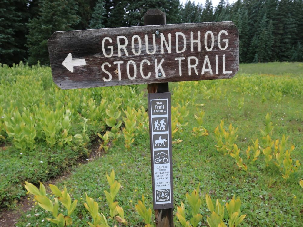 groundhog-stock-trail-colorado-rico