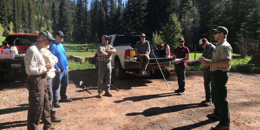 RTA Joins in Priest Gulch Trail Work Day